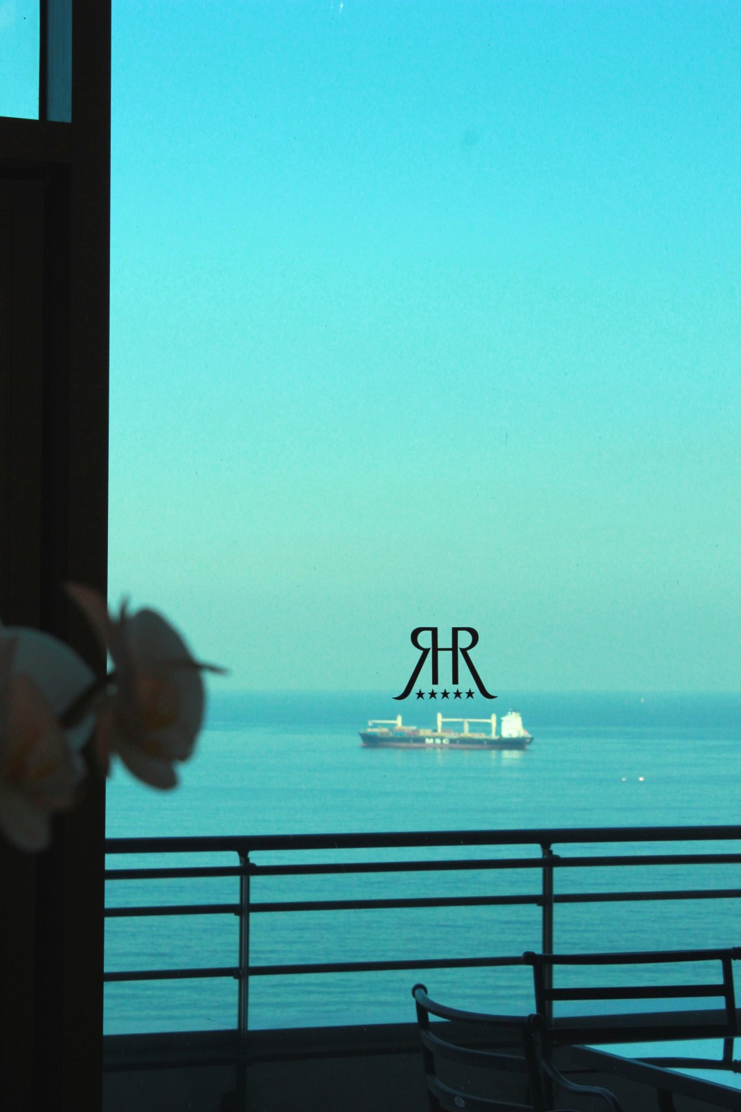 Miniature ship