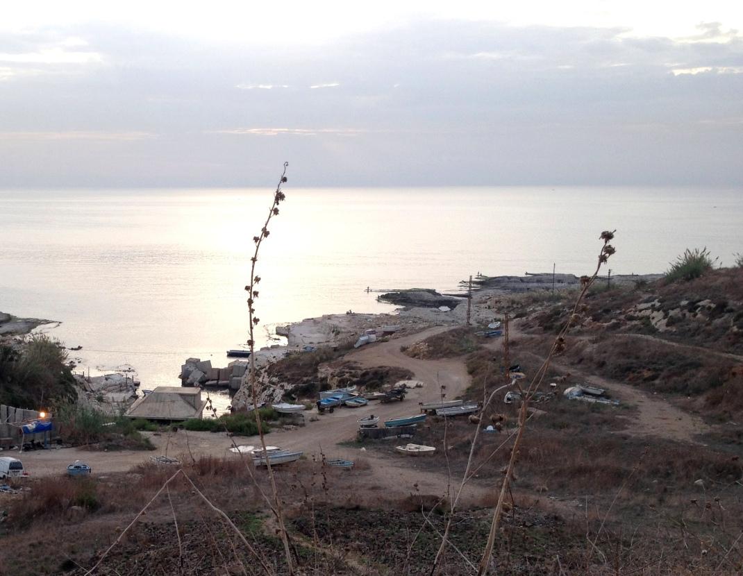 al-Dalia